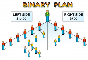 mlm binary comp plan